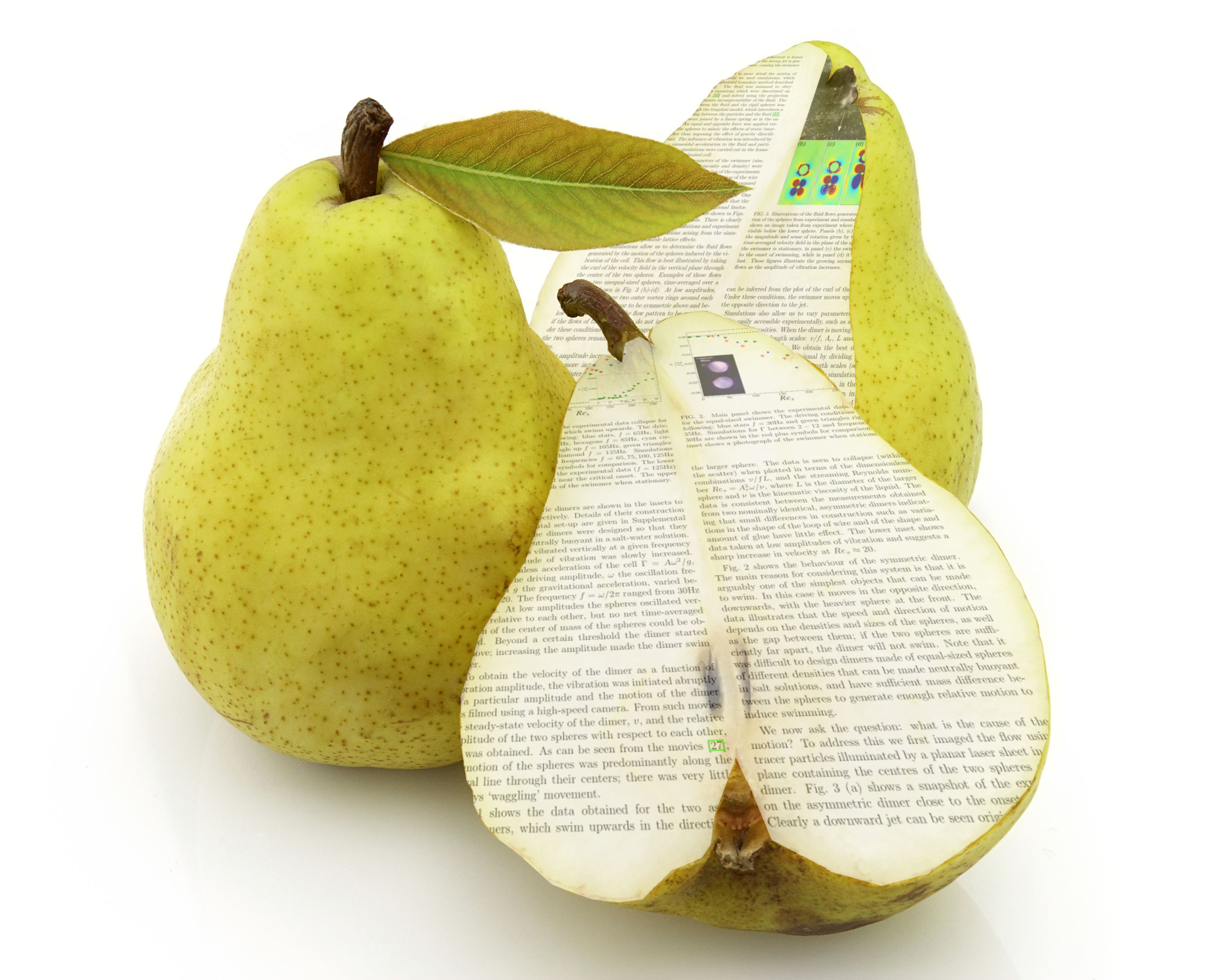 Pear-shaped peer reviewed paper, courtesy of Tom Moore Photographics. Because everybody loves puns.