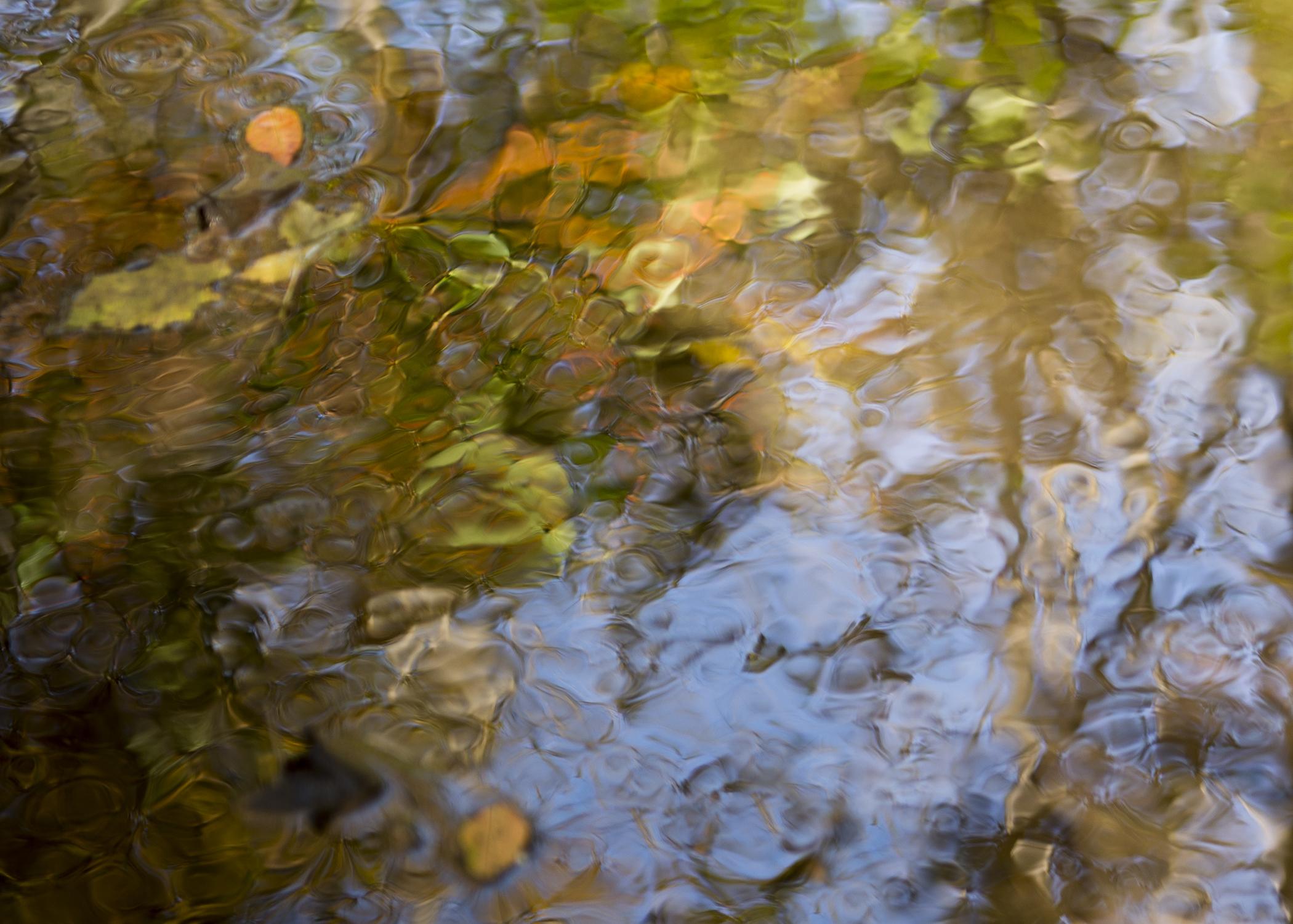 Autumn Aqua