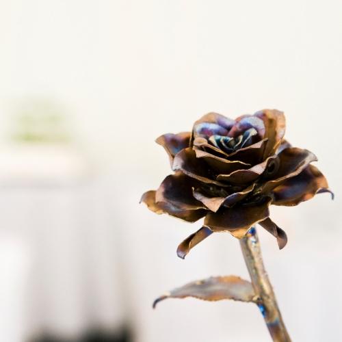 Titanium rose
