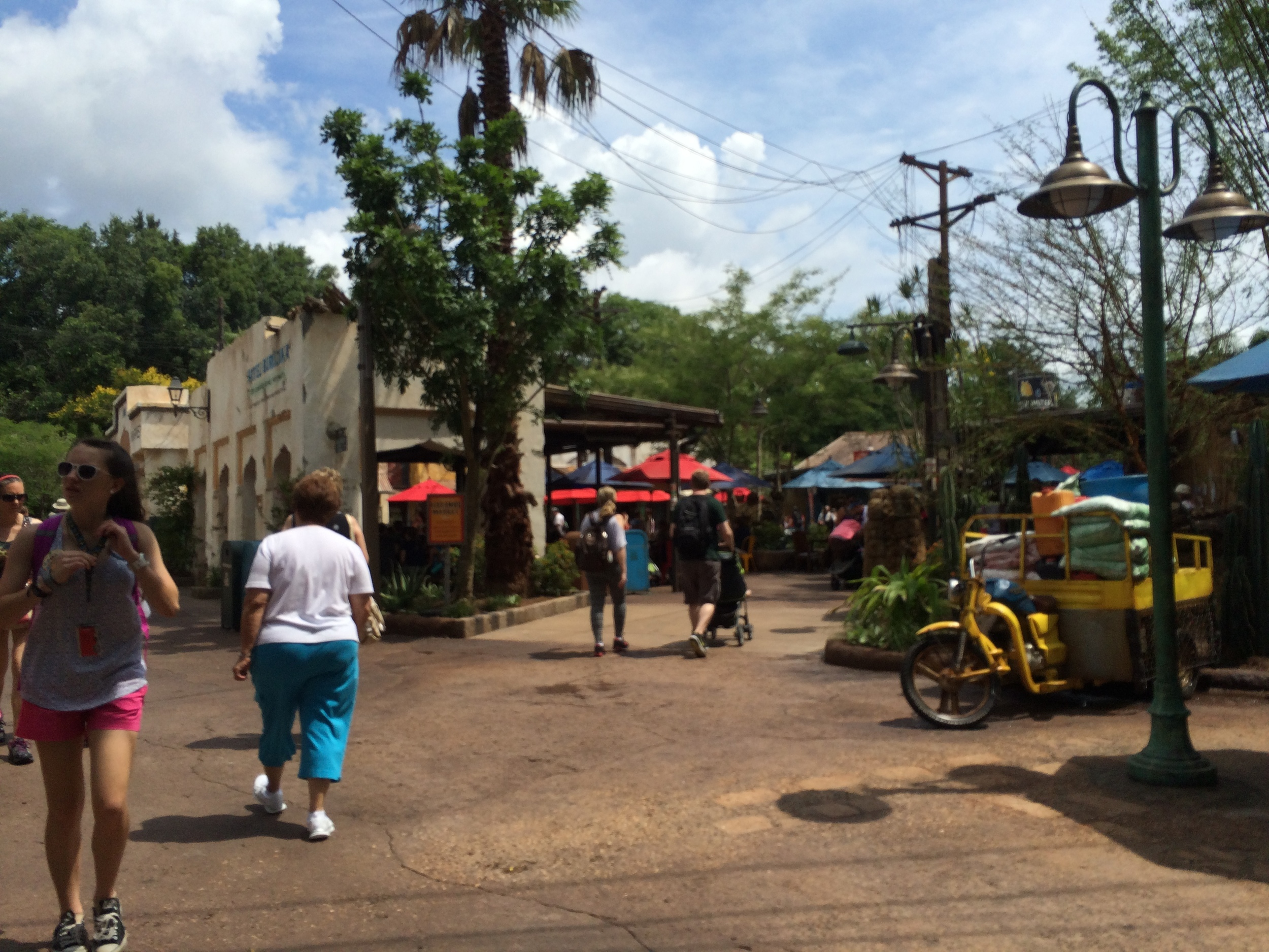 New side entrance that leads to this end of the Harambe Market.