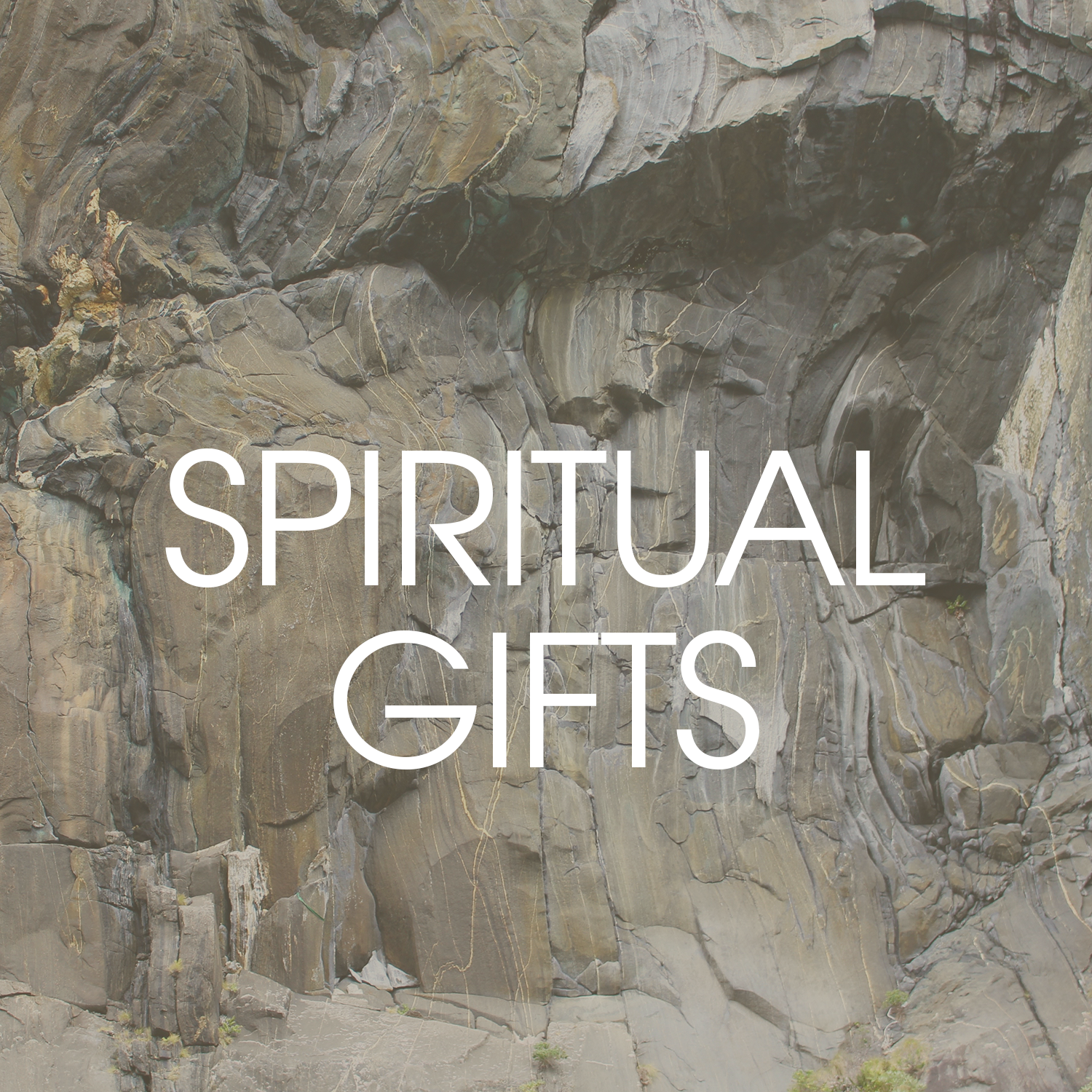 We believe spiritual gifts have been given to every believer and everyone should function in their gifts for the building up of the Body of Christ.