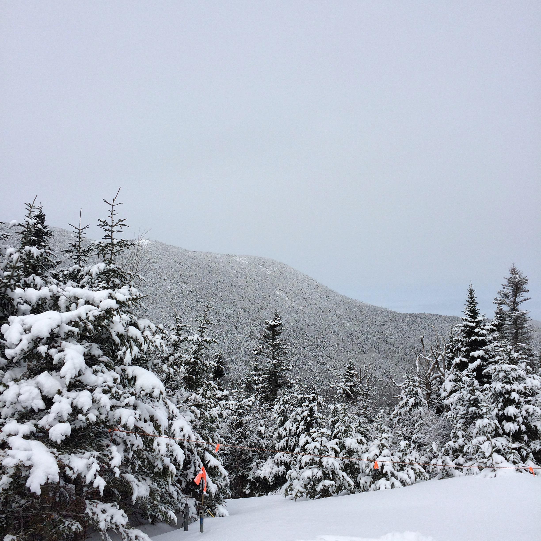 Sugarbush Mountain