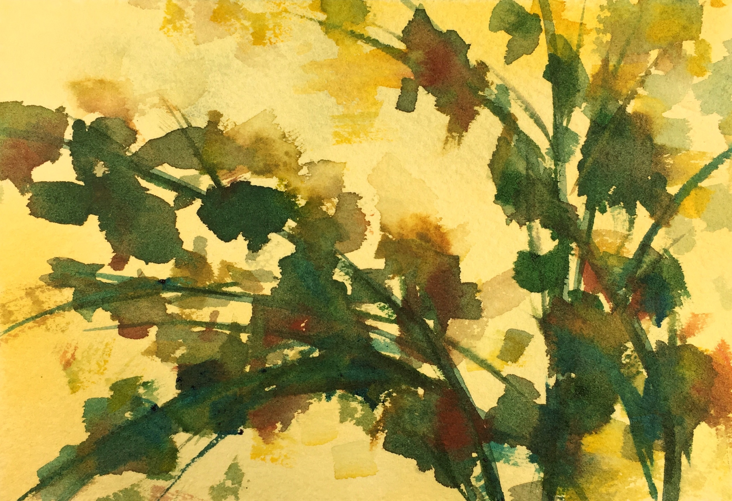 [Day93 of 100] Foliage
