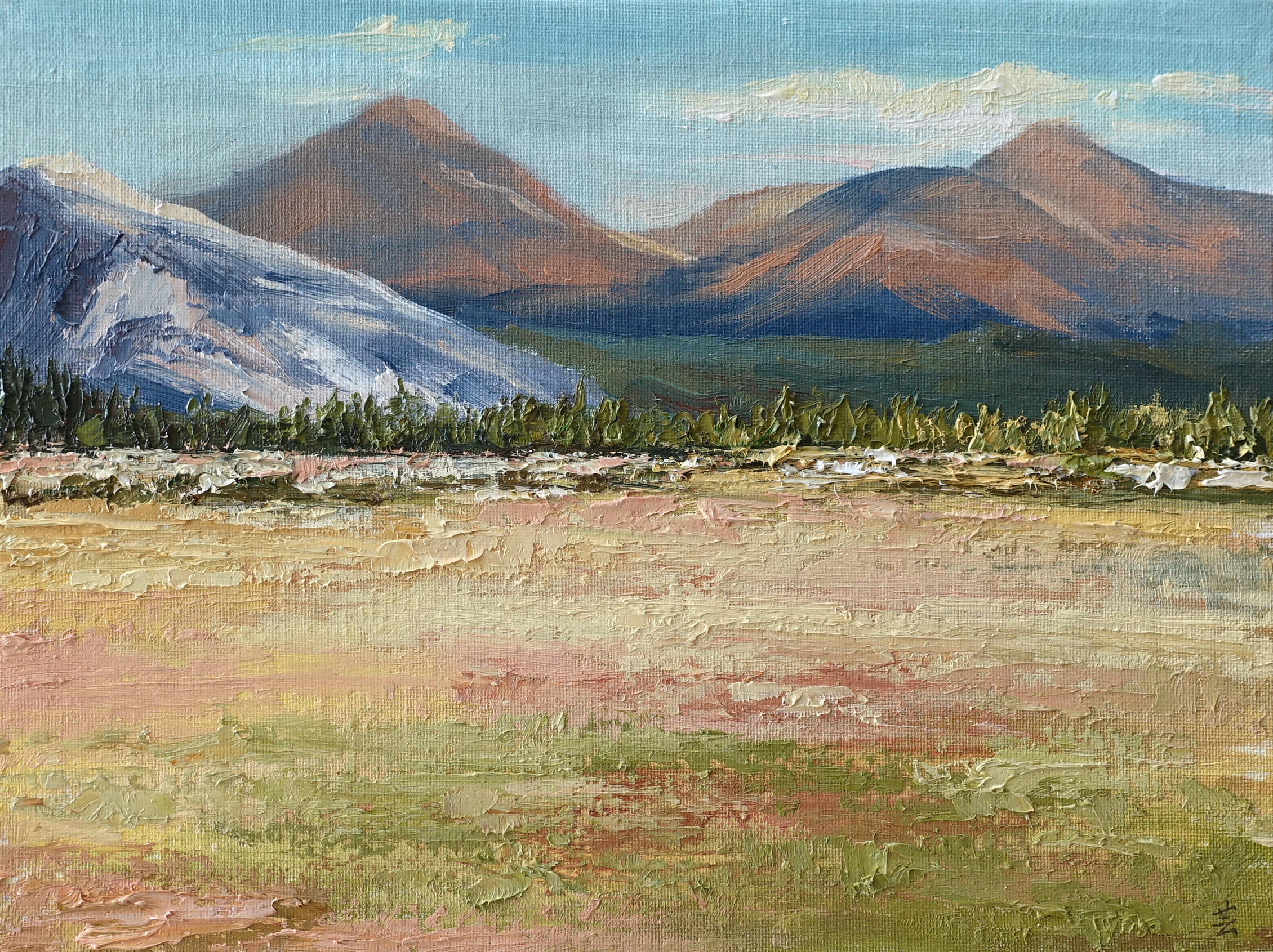 "Tuolumne Meadows, 9""x12"", oil on canvas panel, 2017, Sold"