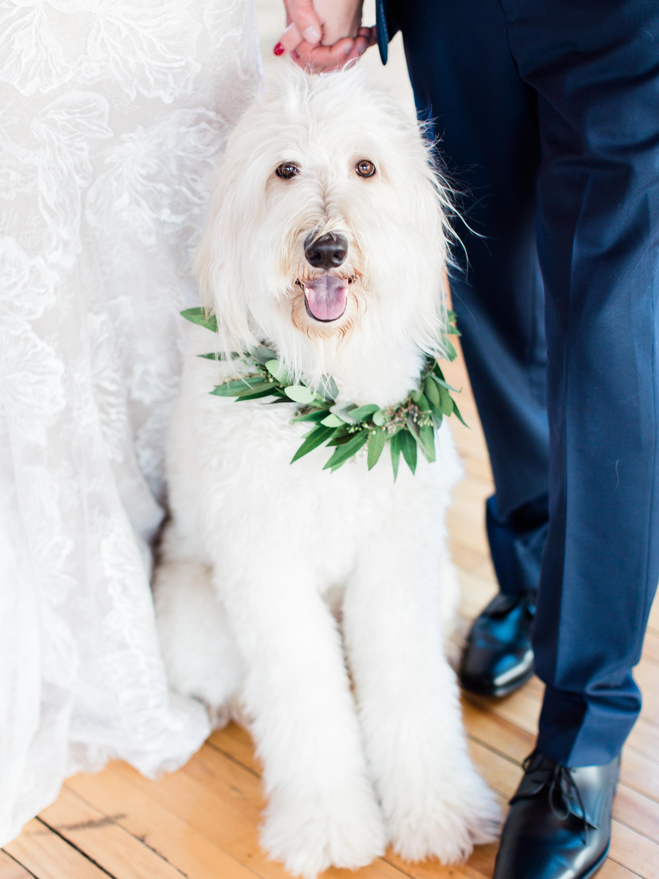Vogelzang+Wedding+First+Look-39.jpg