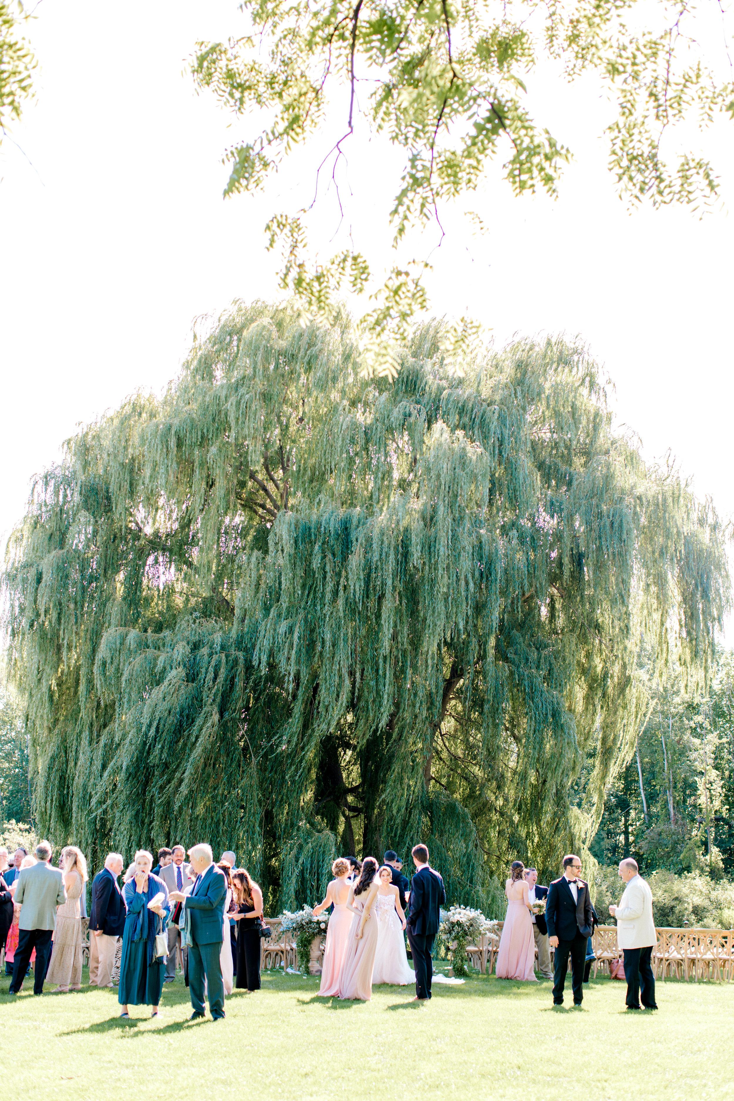 Steinlage+Wedding+Cocktail+Hour-15.jpg