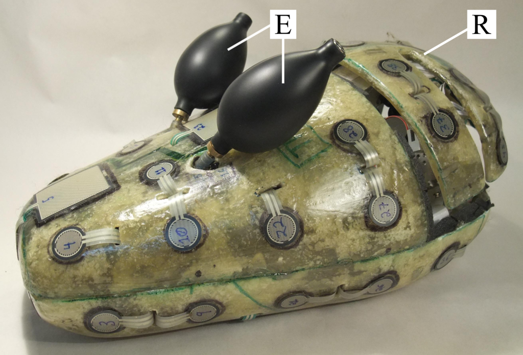 Figure 1: The Haptic Creature without exterior fur. Visible are the fiberglass shell; touch sensor mesh; the two ear bulbs [E]; and the rib cage [R].