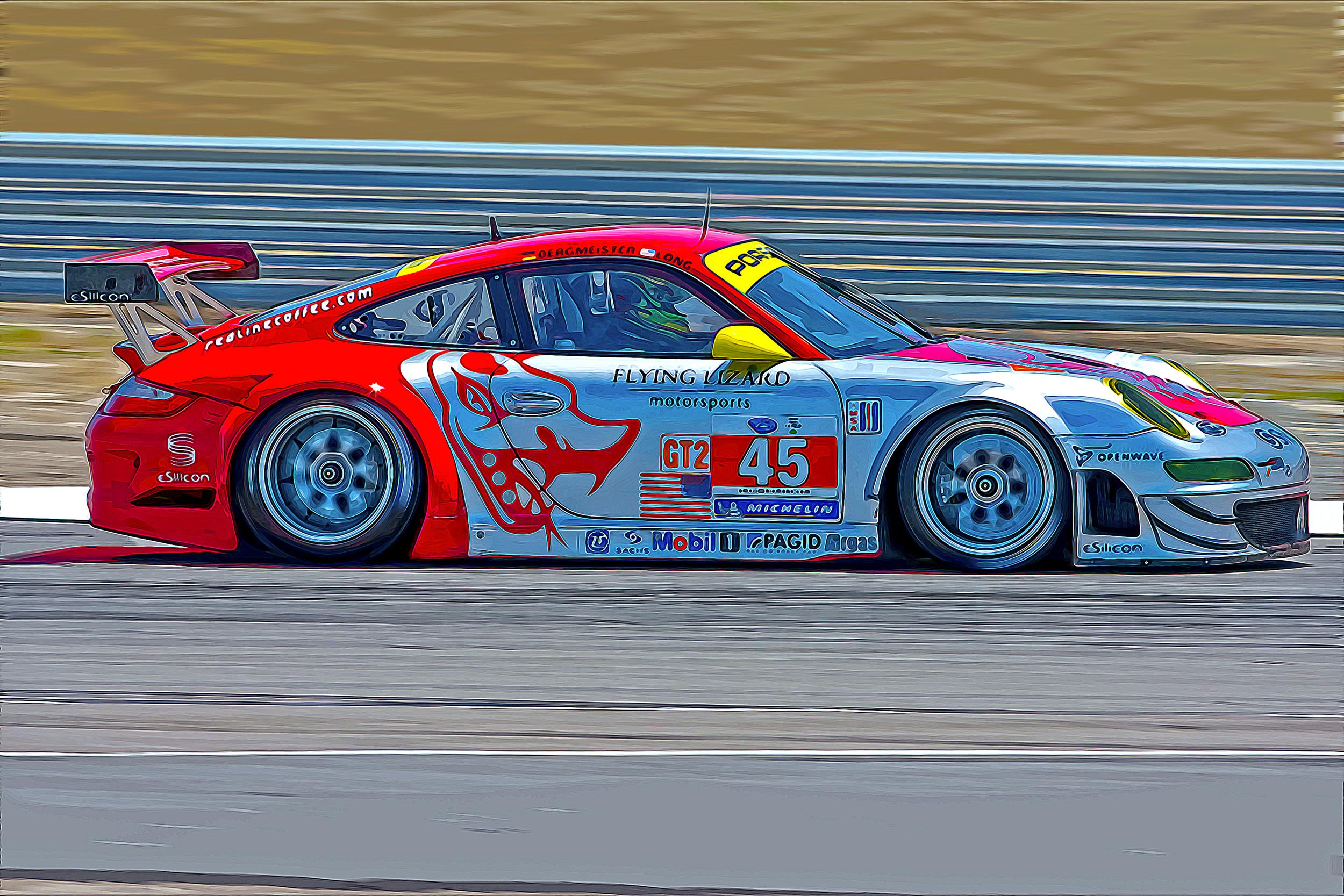 ALMS Porsche 2010