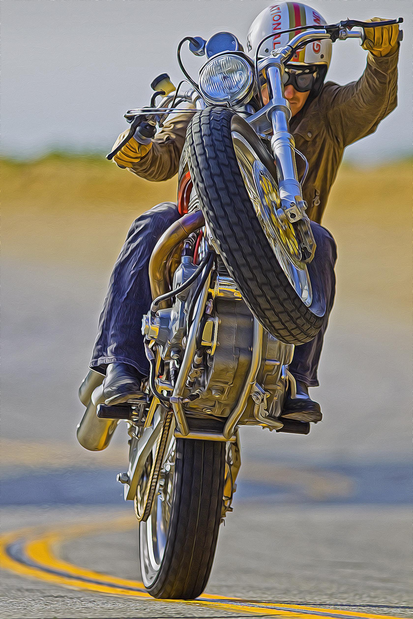 Mule Baisley    Rider Cernicky