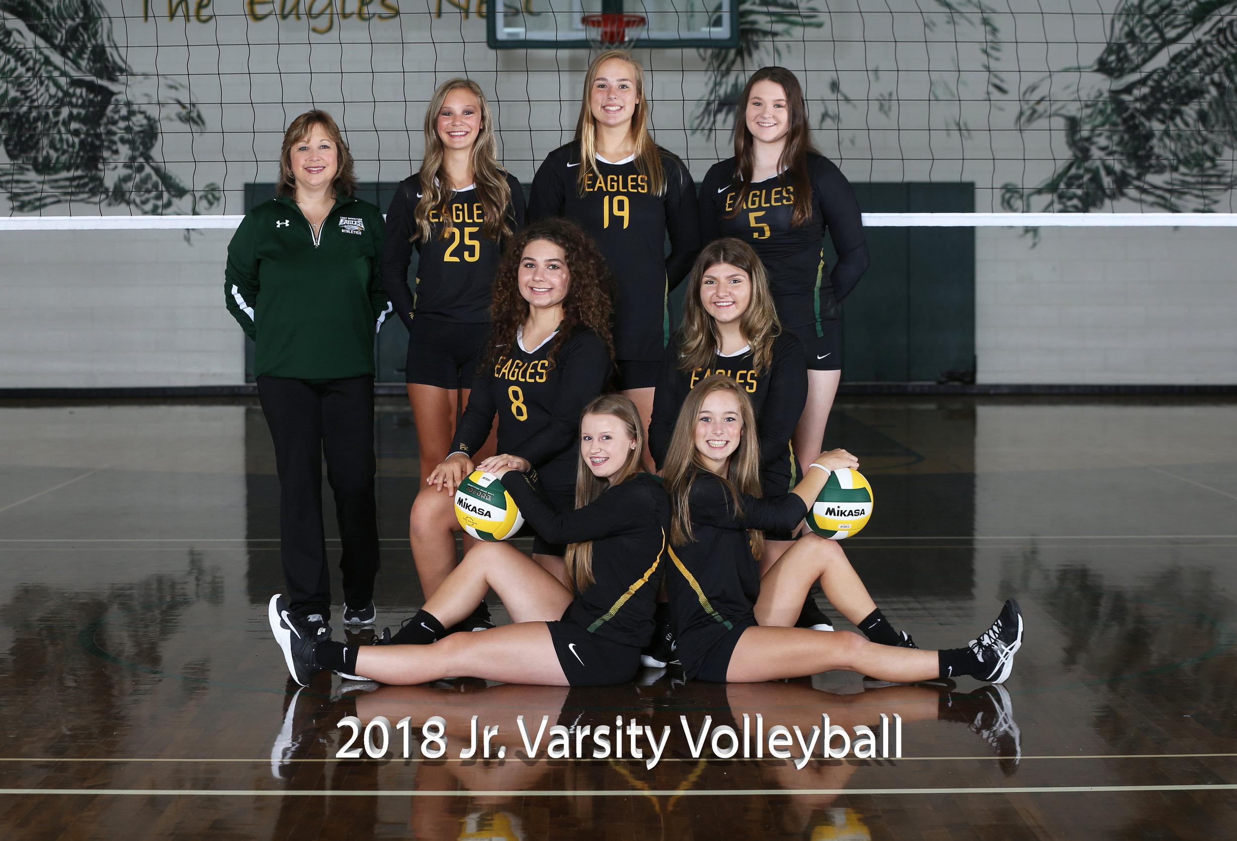 2017 Jr. Varsity Volleyball