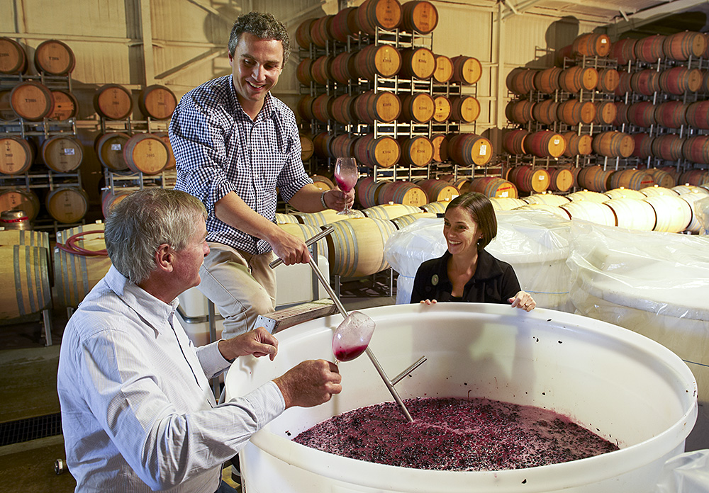 I know that the winemakers at Penfolds now value Wrattonbully fruit very highly, especially Cabernet Sauvignon. It is used in Grange for example. n 2004, we first planted Sauvignon Blanc on the white sandy soils (eastern aspect of the limestone ridge) and Cabernet Sauvignon on the red clay soils (western aspect of the limestone ridge).  In France we have a saying, white soils for white wines and red soils for red wines.