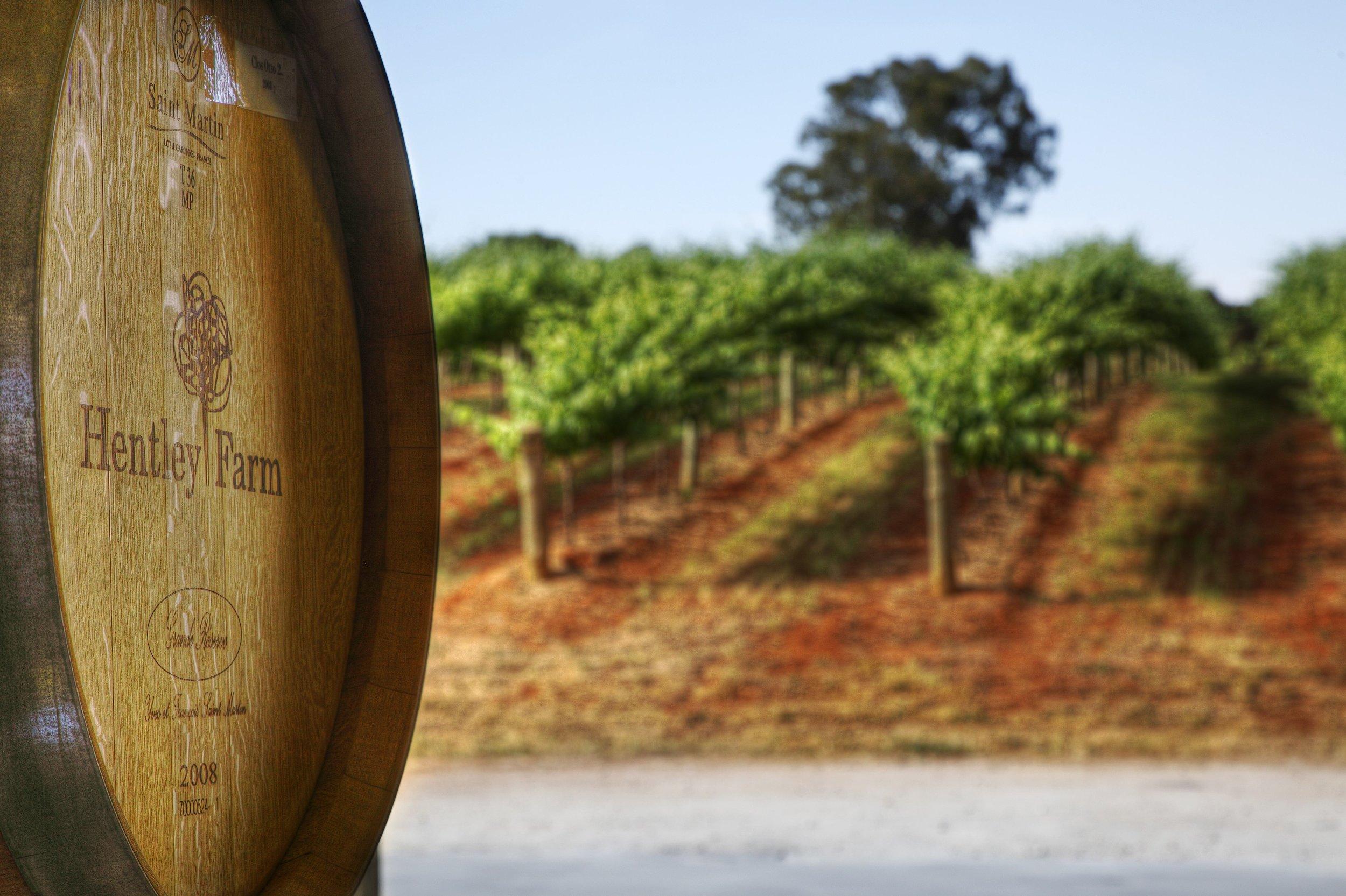 012 - Wine Barrel with Vines web.jpg