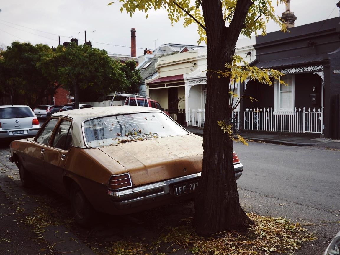 Terrene- Fitzroy Melbourne Street Art -6.JPG