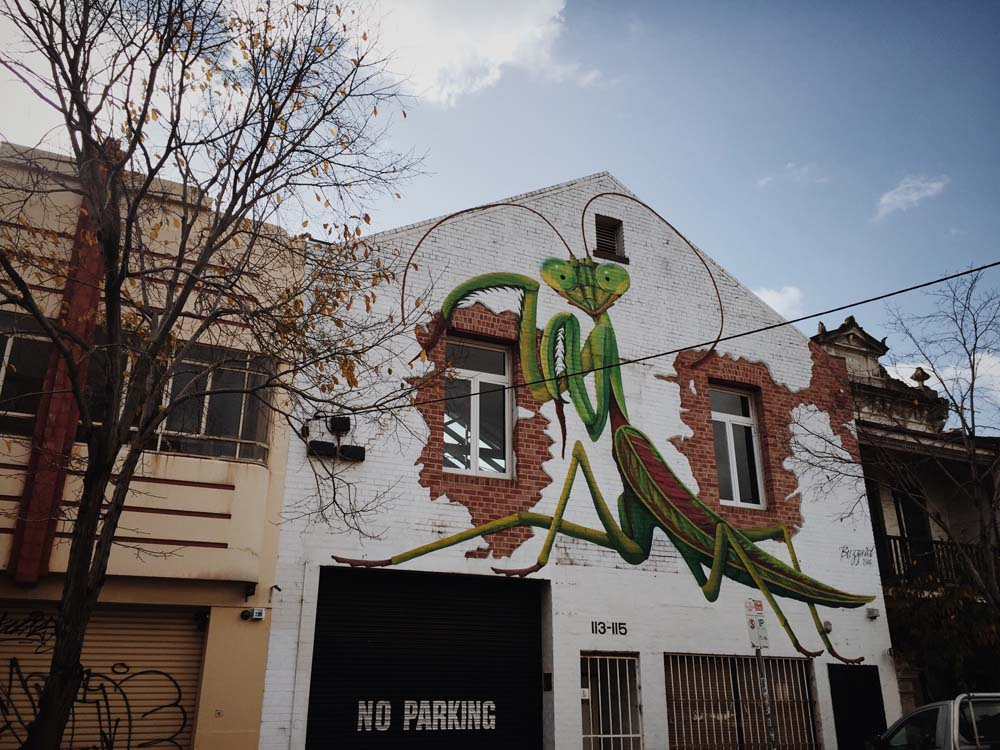 Terrene- Fitzroy Melbourne Street Art -50.jpg