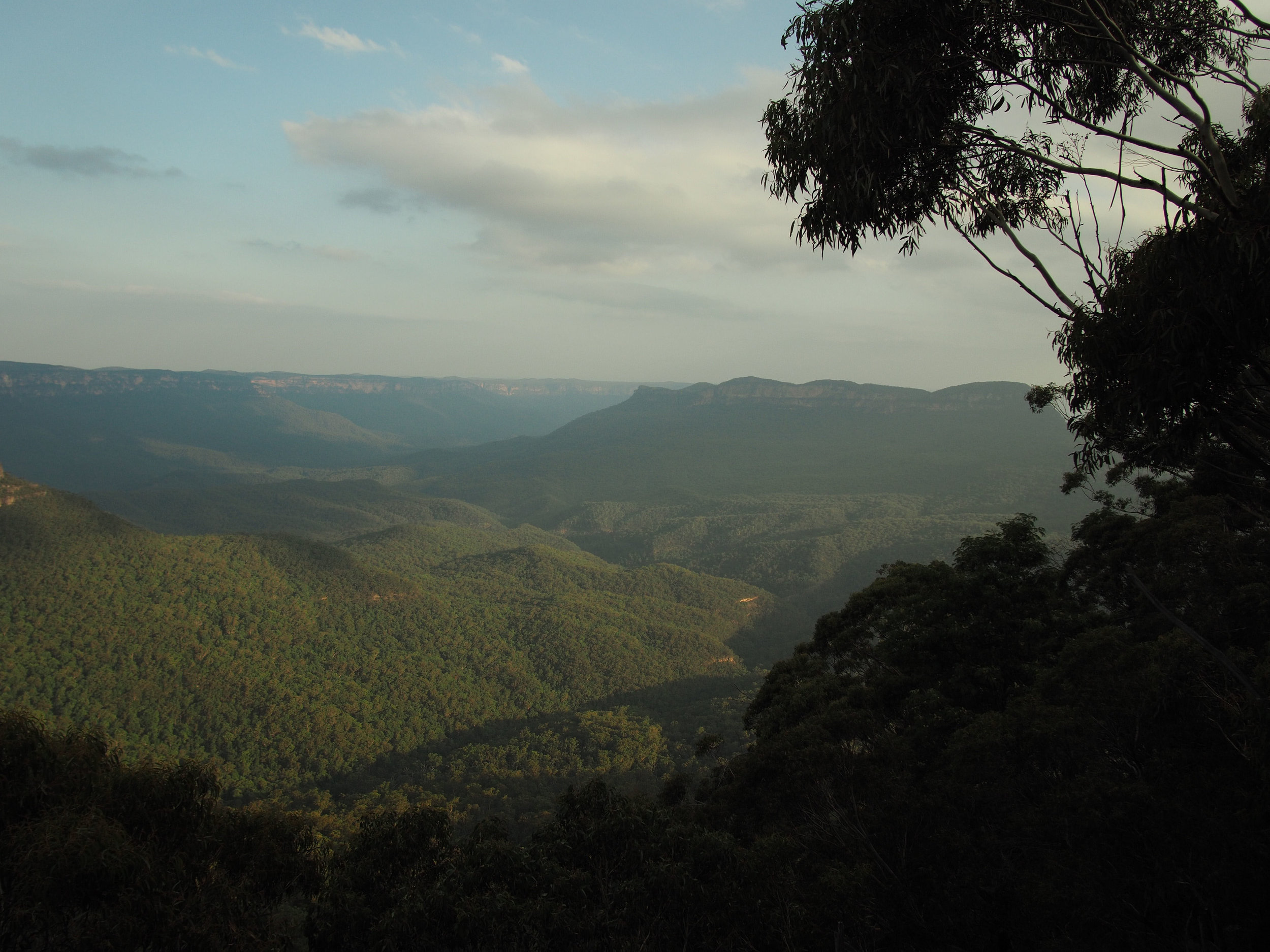 Blue Mountains Ana Petre - Terrene80.jpg