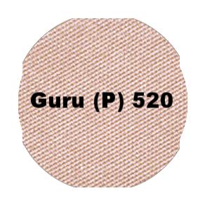520 guru p.png