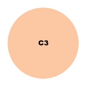 C3.png