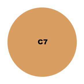 C7.png