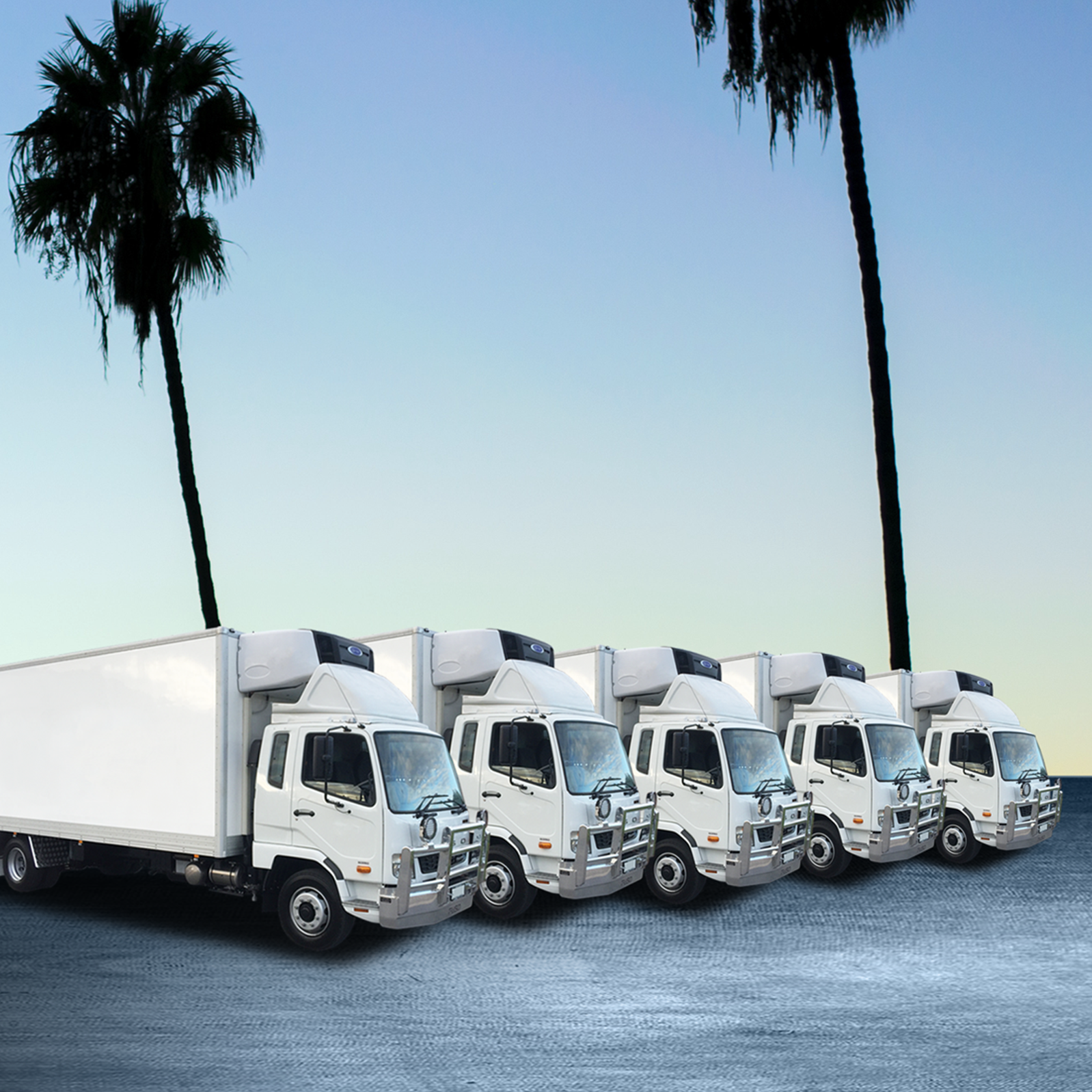 Fleet Service - Corporate & Small Business Contracts