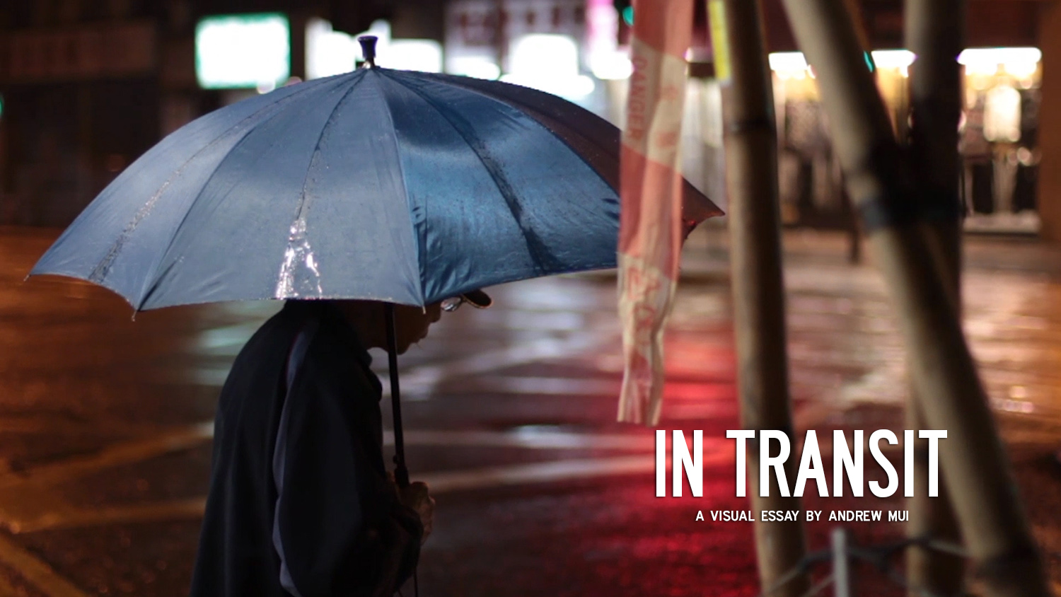 IN TRANSIT (2013) (Digital)  A visual essay directed by Andrew Mui