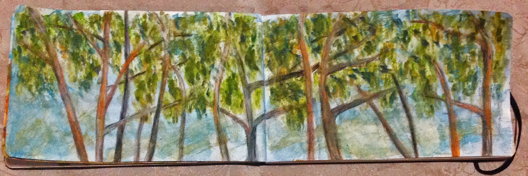 Double page sketch using Watercolour and mixed media from a recent stay in Clare Valley South Australia in a Landscape Moleskin I love using. I was sketching while relaxing on the balcony of our accommodation, the upper branches of the trees in front of me begging for their story to be recorded.