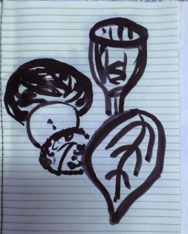 Ink drawings still life sketch book.jpg