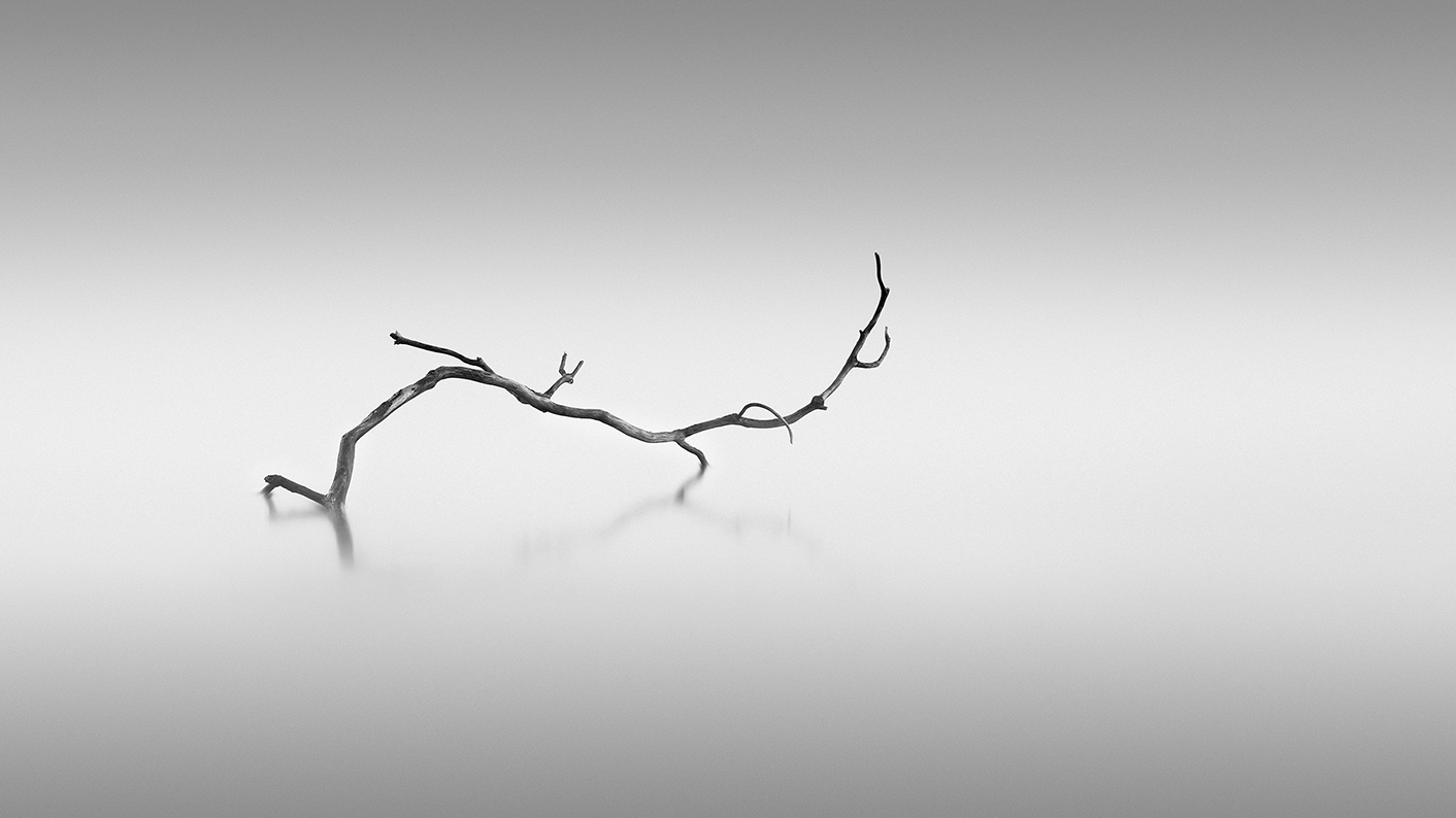 TWISTED - First place WPOTY