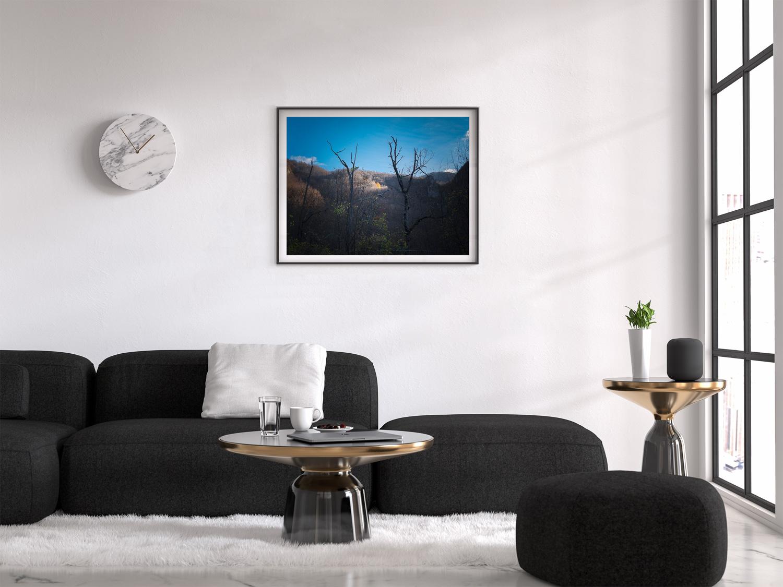 astrakahorses_frame_living_room.jpg