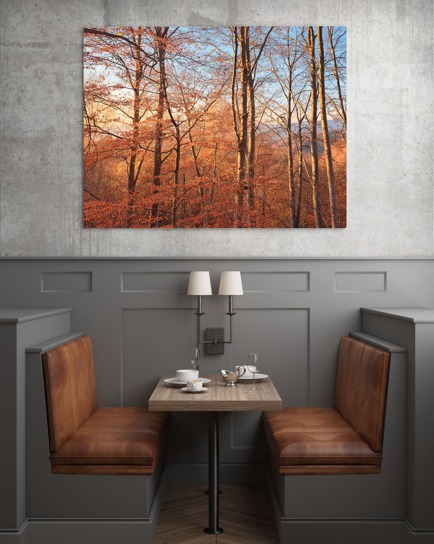 rodopifalltrees_extra_frame_restaurant.jpg