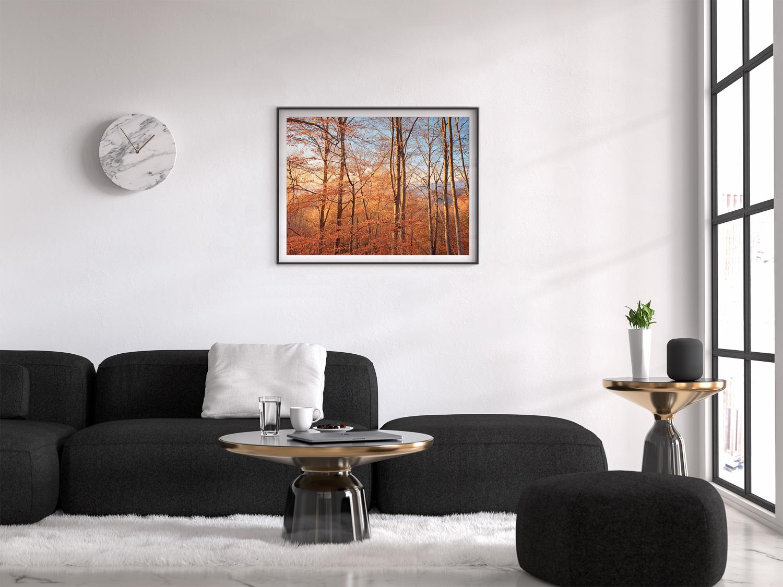 rodopifalltrees_frame_living_room.jpg