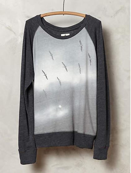 Anthropologie sweatshirt   ($107)