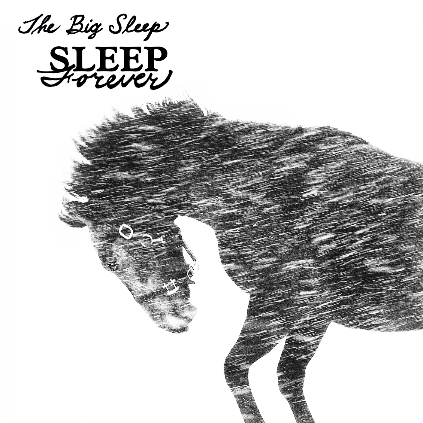 THE BIG SLEEP   SLEEP FOREVER    Listen HERE