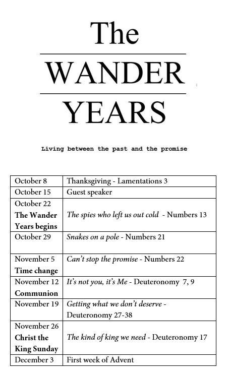 wander years series.JPG
