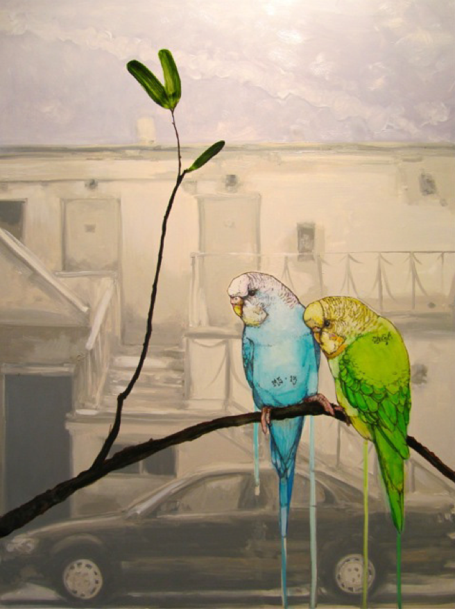 SAGE VAUGHN - FIFTY24SF - RUNAWAYS - PARAKEETS