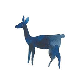 deerdeer.jpg