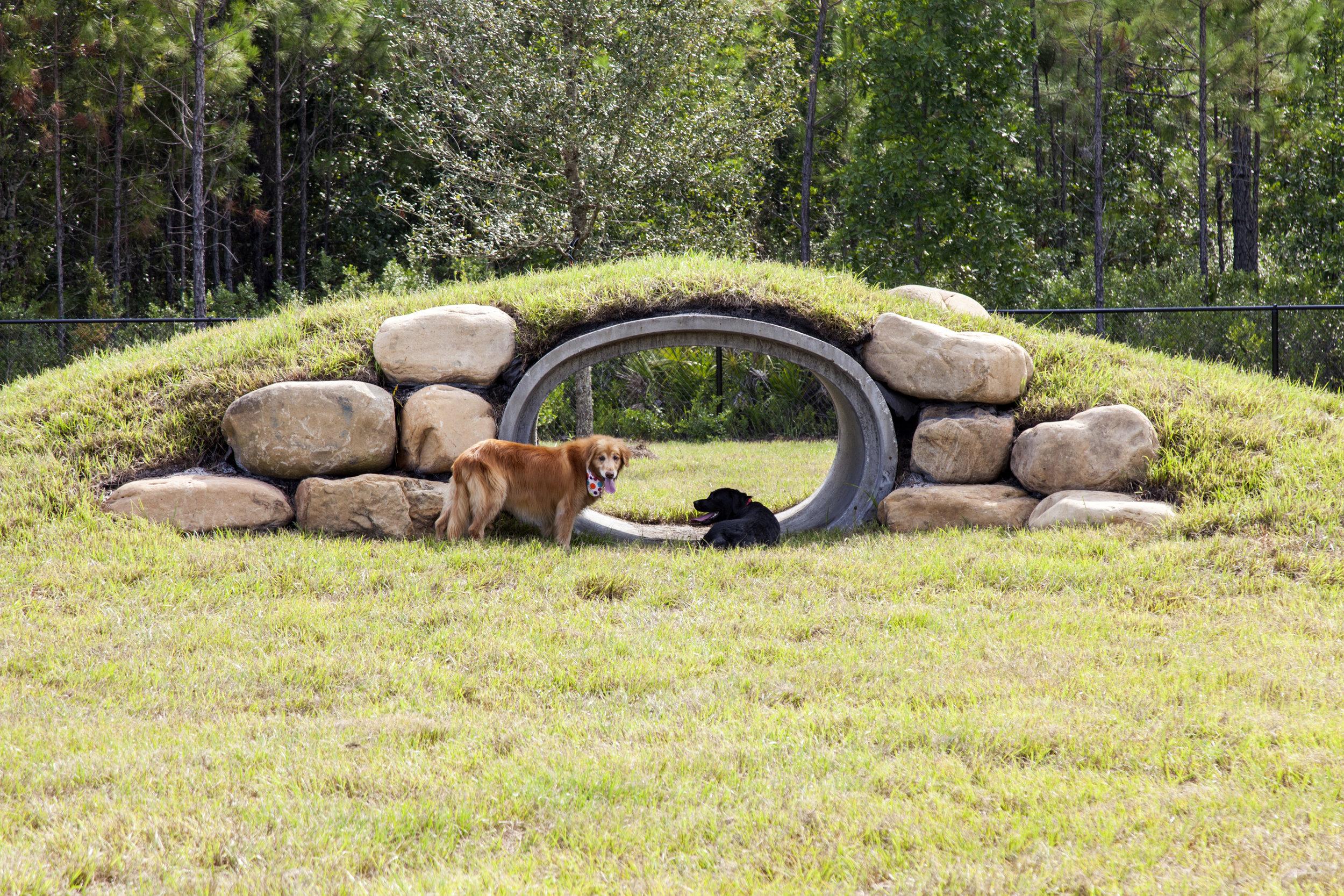 Don Davis Dog Park-174.jpg