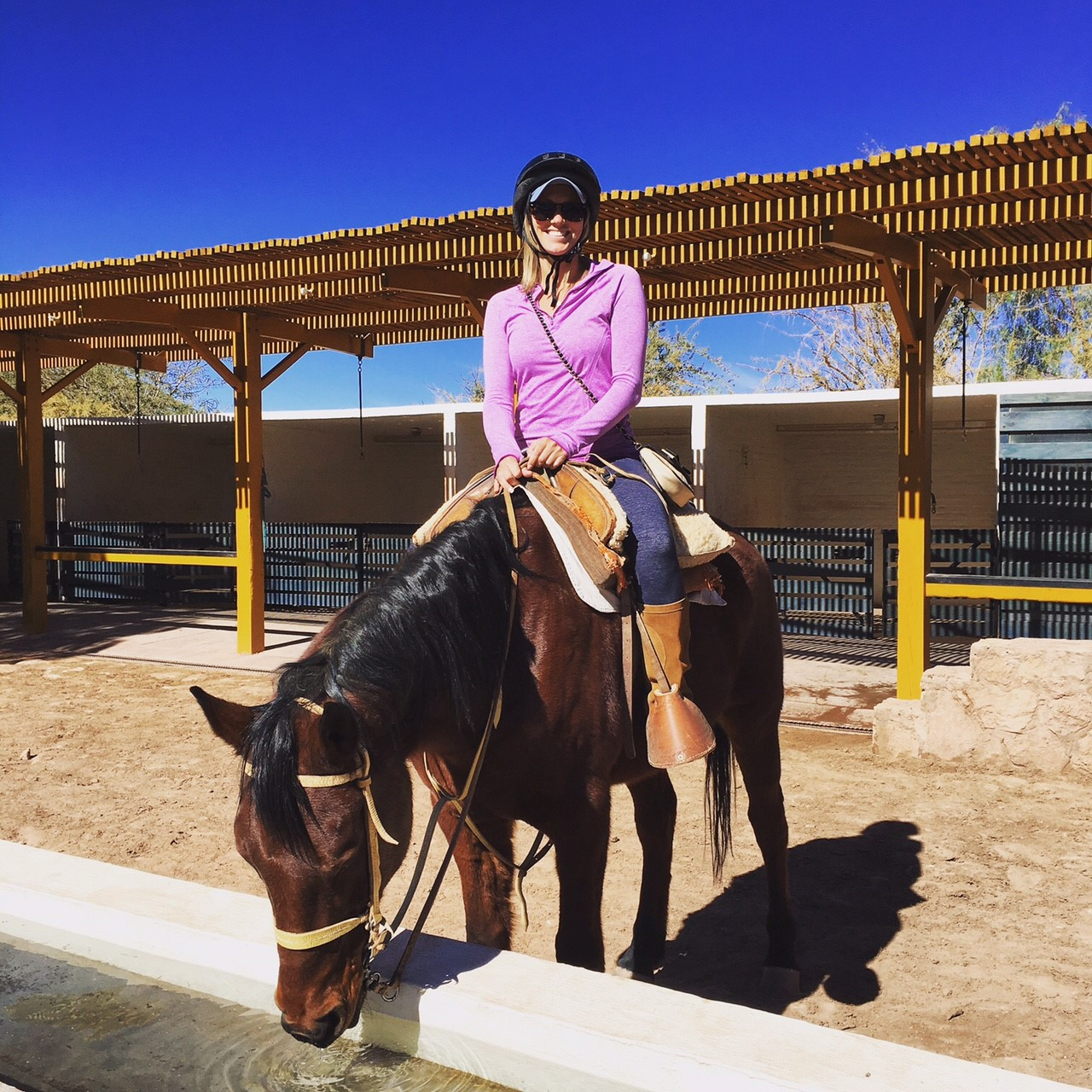 SARAH ON HORSE.jpg