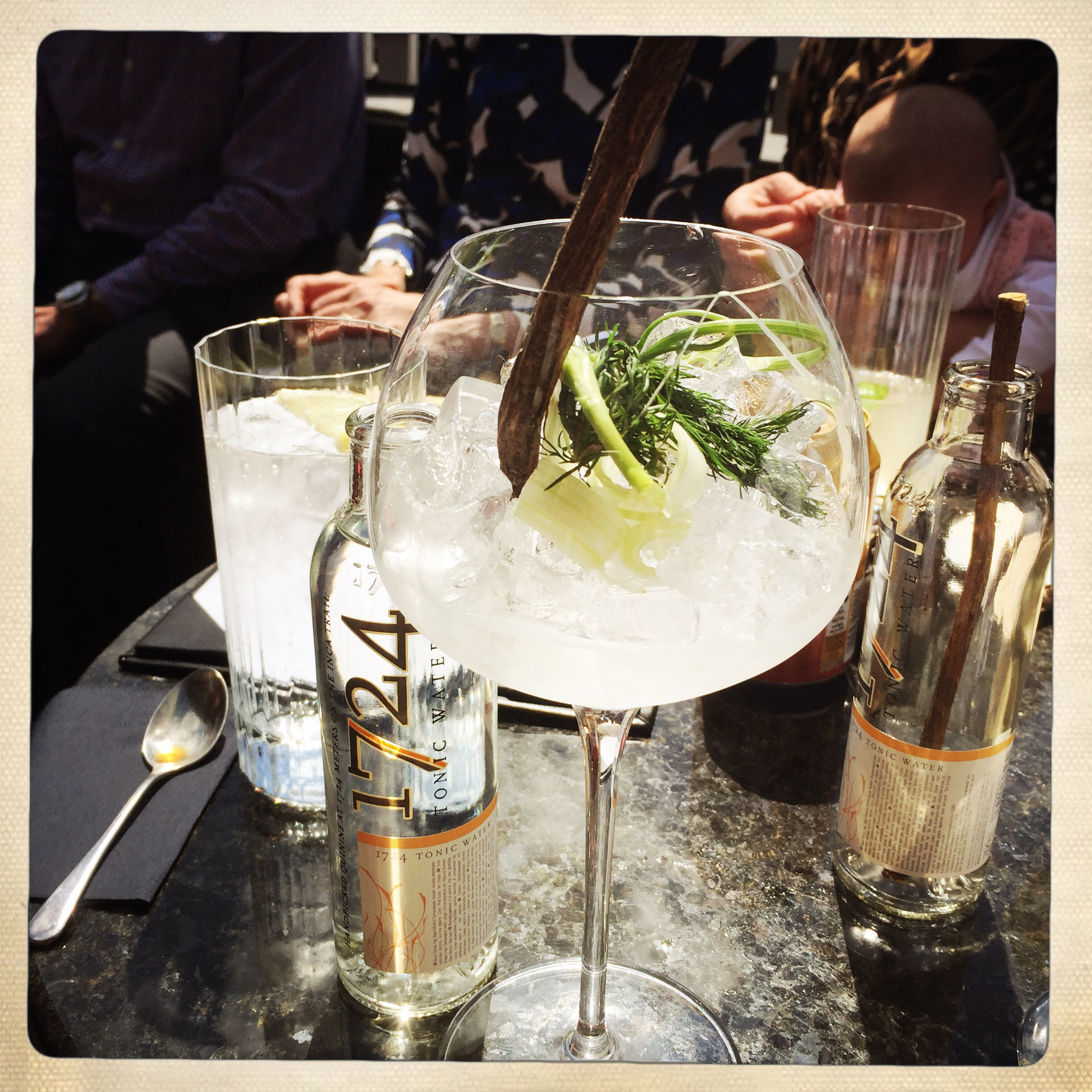 Tom's vegetable gin with celery and dill