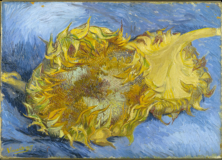 Vincent van Gogh's Sunflowers -He was known for faithfully painting what he saw
