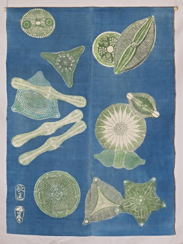 diatomes-Noren-2015-inspiration-point-Karen-miller-stormy-weather.jpg