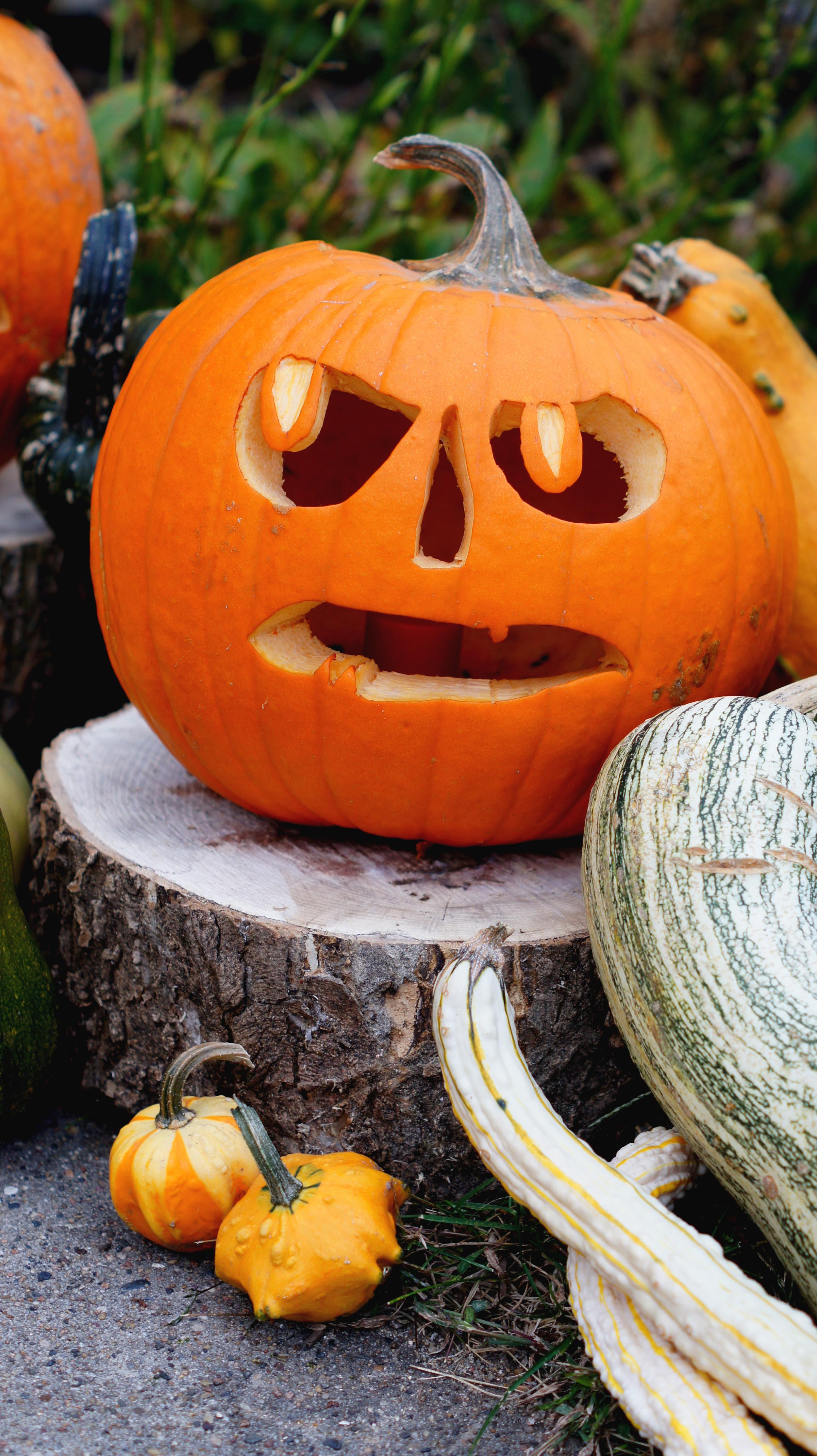 Carved Pumpkin 6.jpg