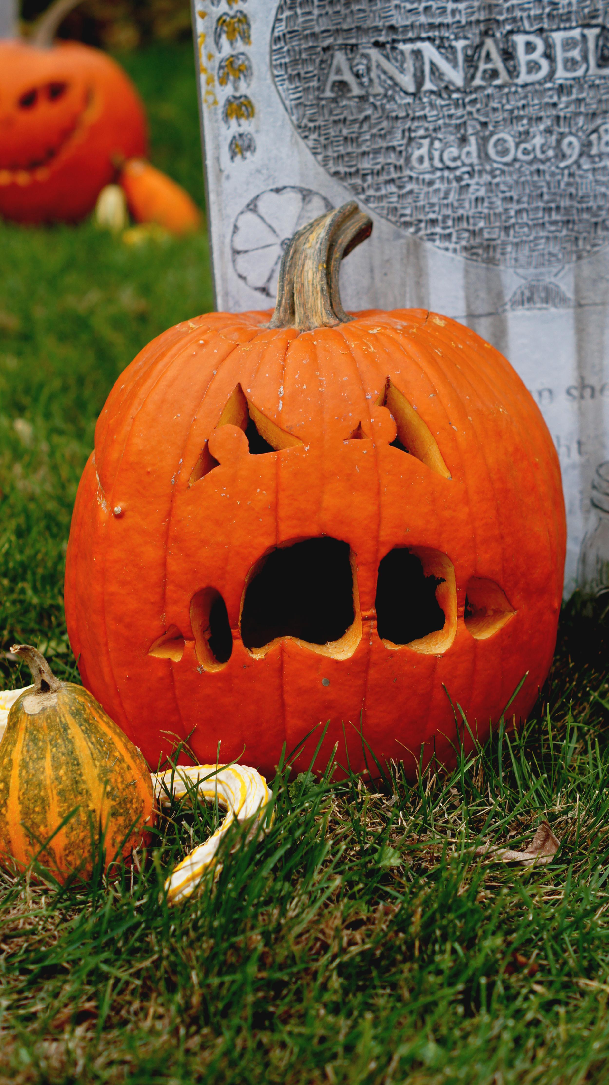 Carved Pumpkin 8.jpg