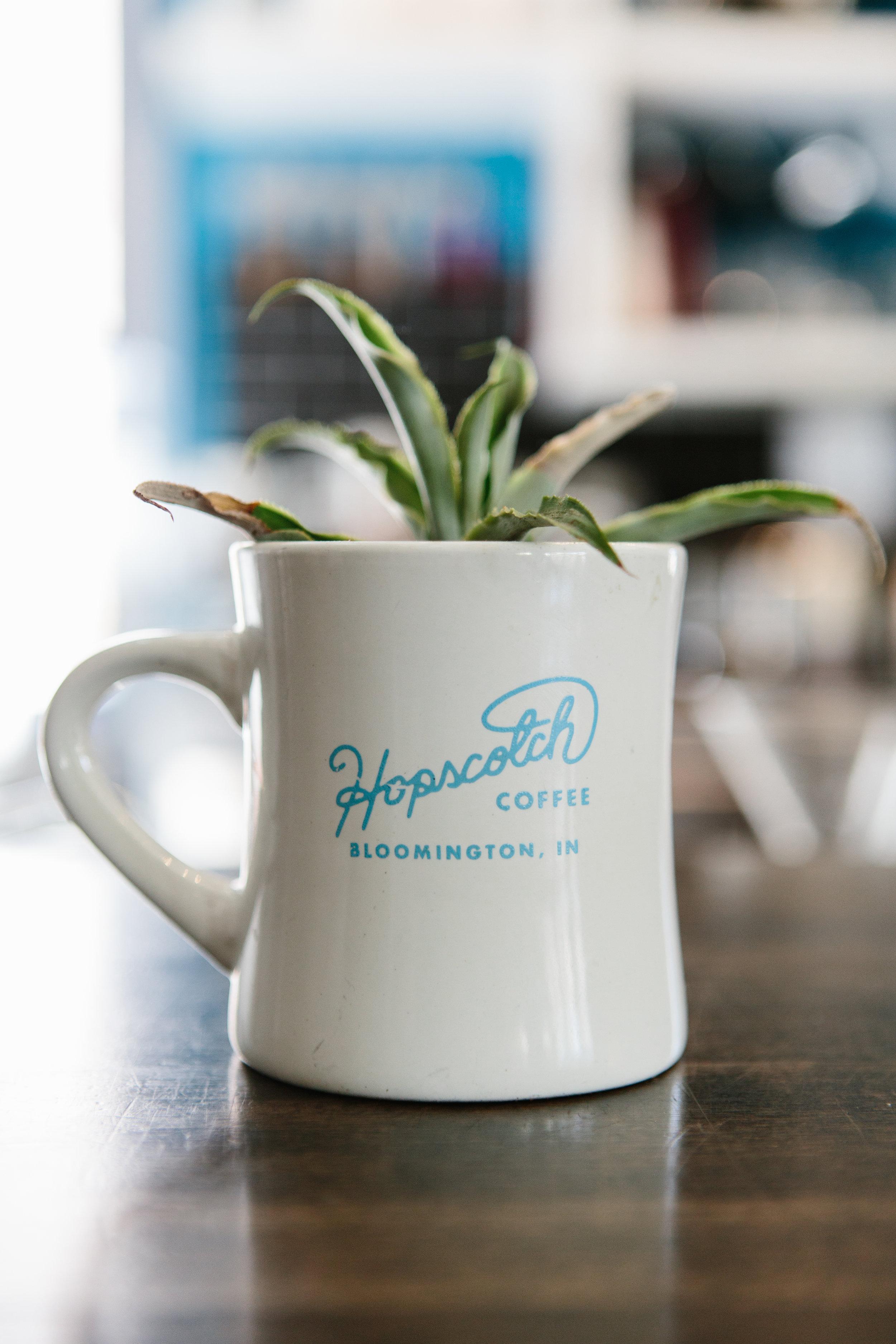 APT_Hopscotch17.jpg