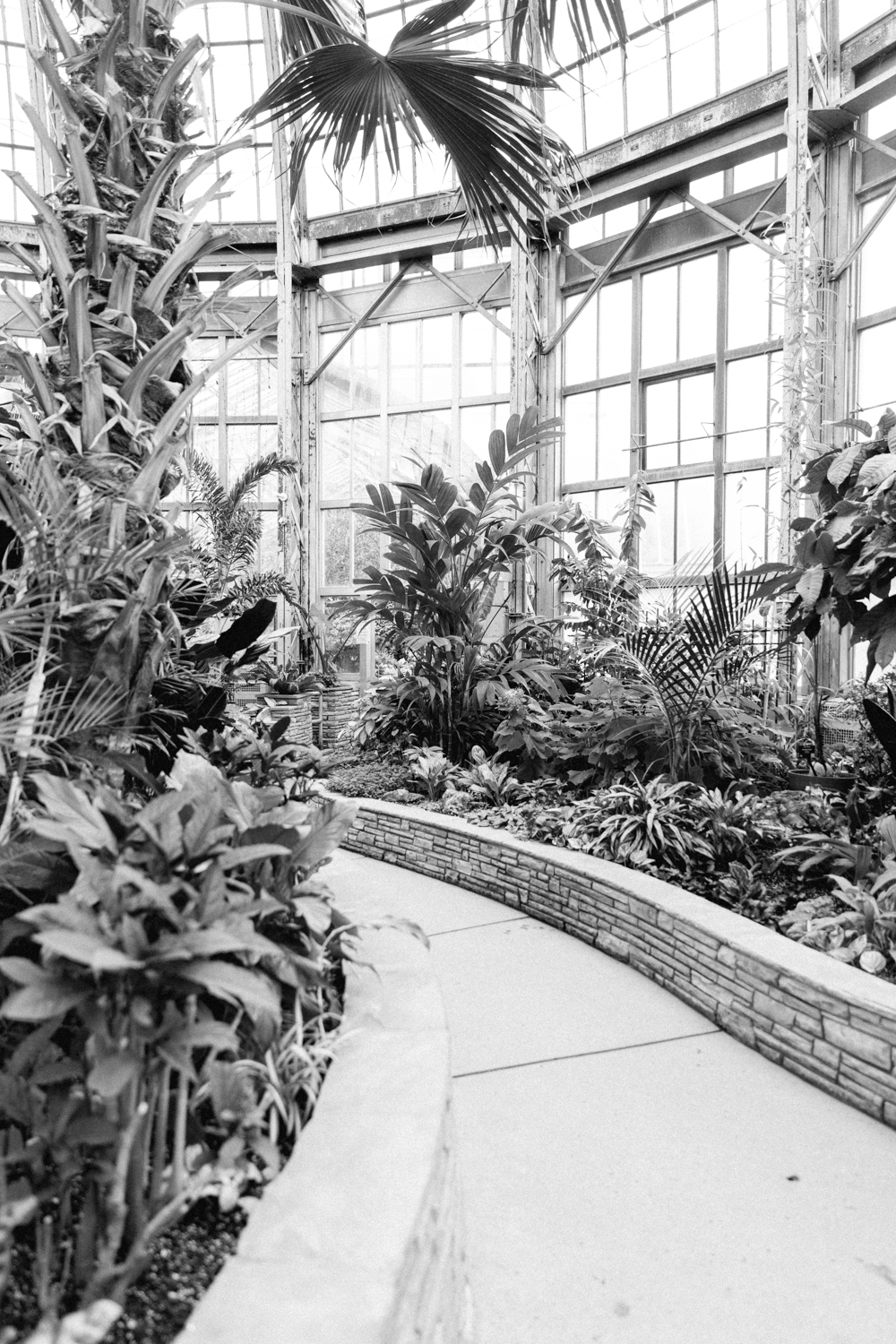 midwest-conservatory-plants-documentary-photographer