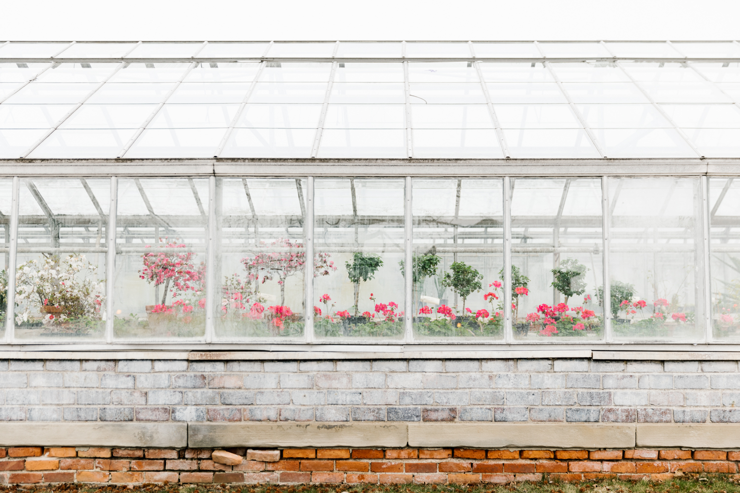 A photo of a greenhouse at the Belle Isle Conservatory in Detroit, Michigan.