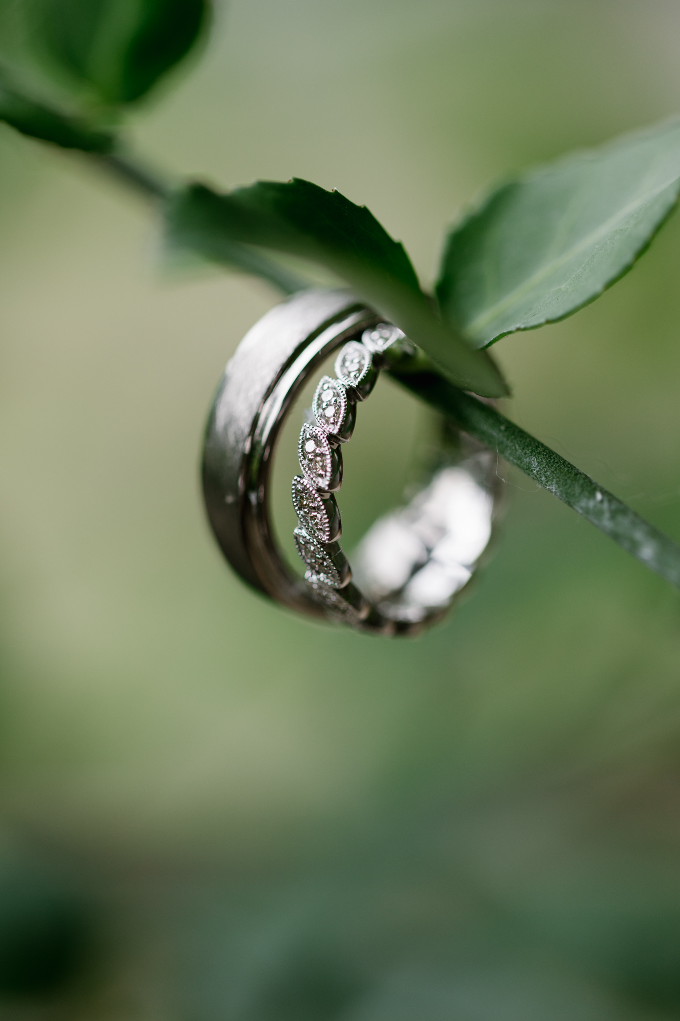 Ring photography from a wedding at Indiana University in Bloomington, Indiana.
