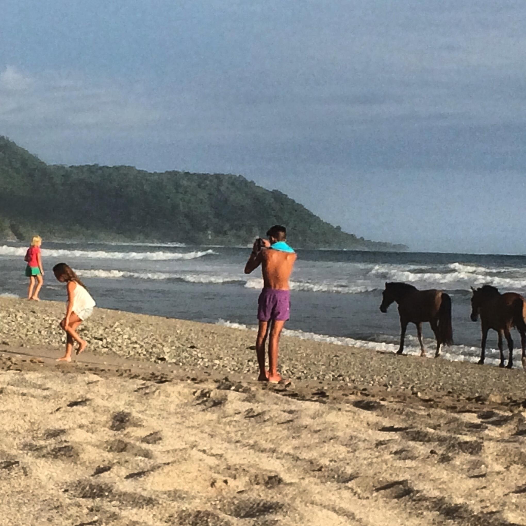 Pristine beaches of ST - where children play free & horses run free.