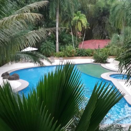 Lush Gardens & Gorgeous Pool at DoceLunas in Jaco