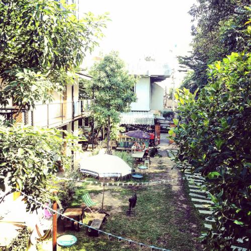 The yard at  The Yard Hostel Bangkok.