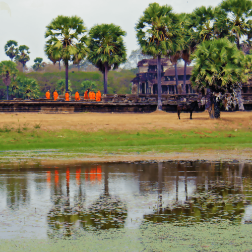 A group of monks and their reflections walking together as they enter Angkor Wat temples.
